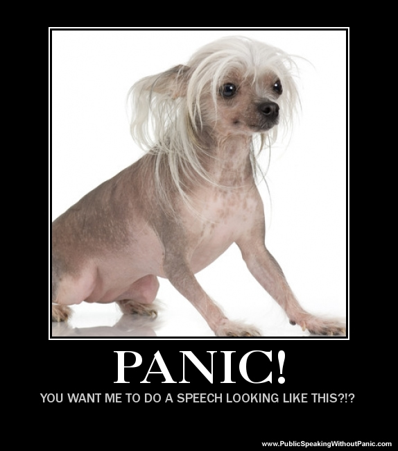 panic dog doing speech